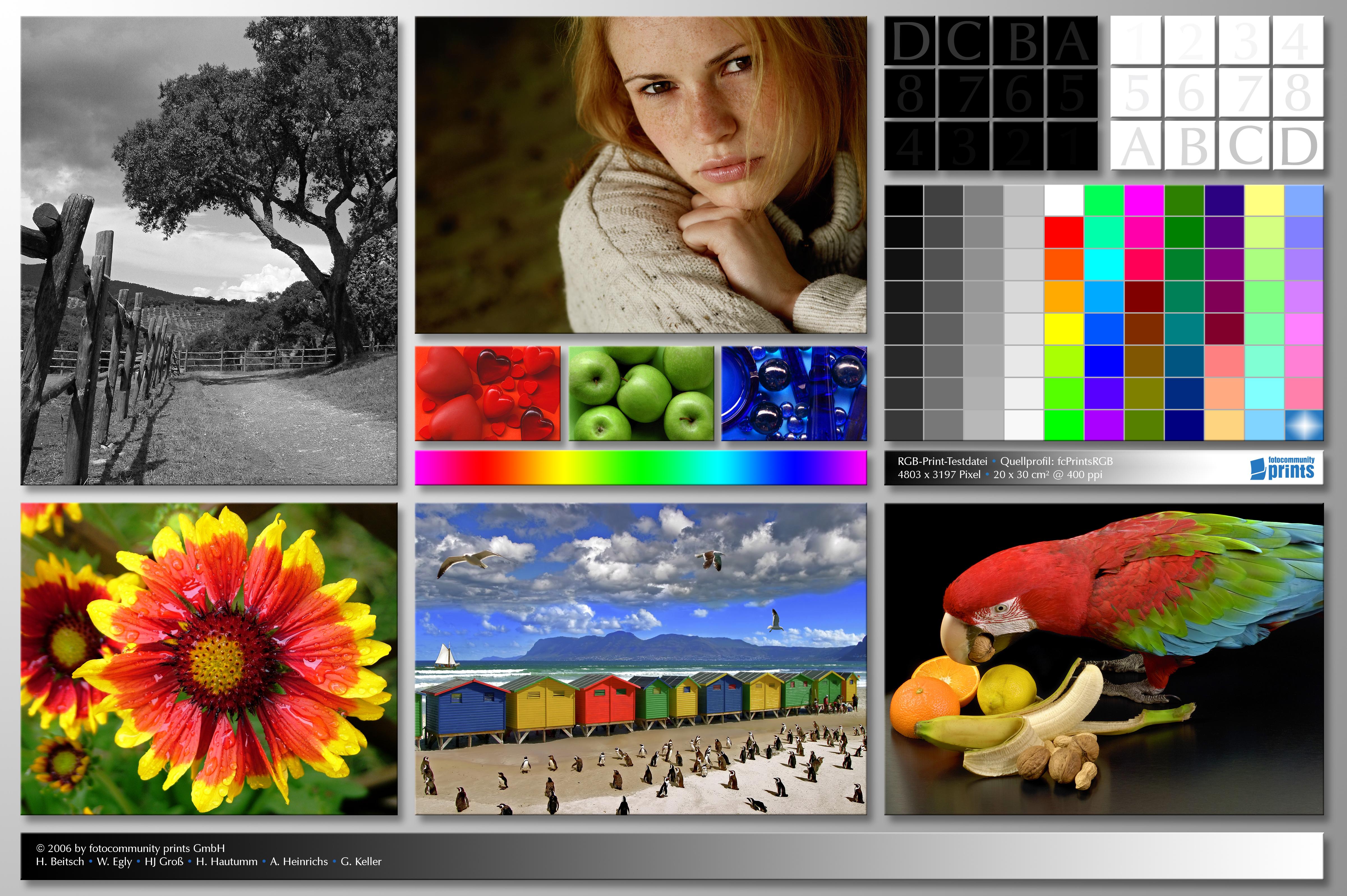 калибровка, монитор, принтер, проверка, цвет, качество