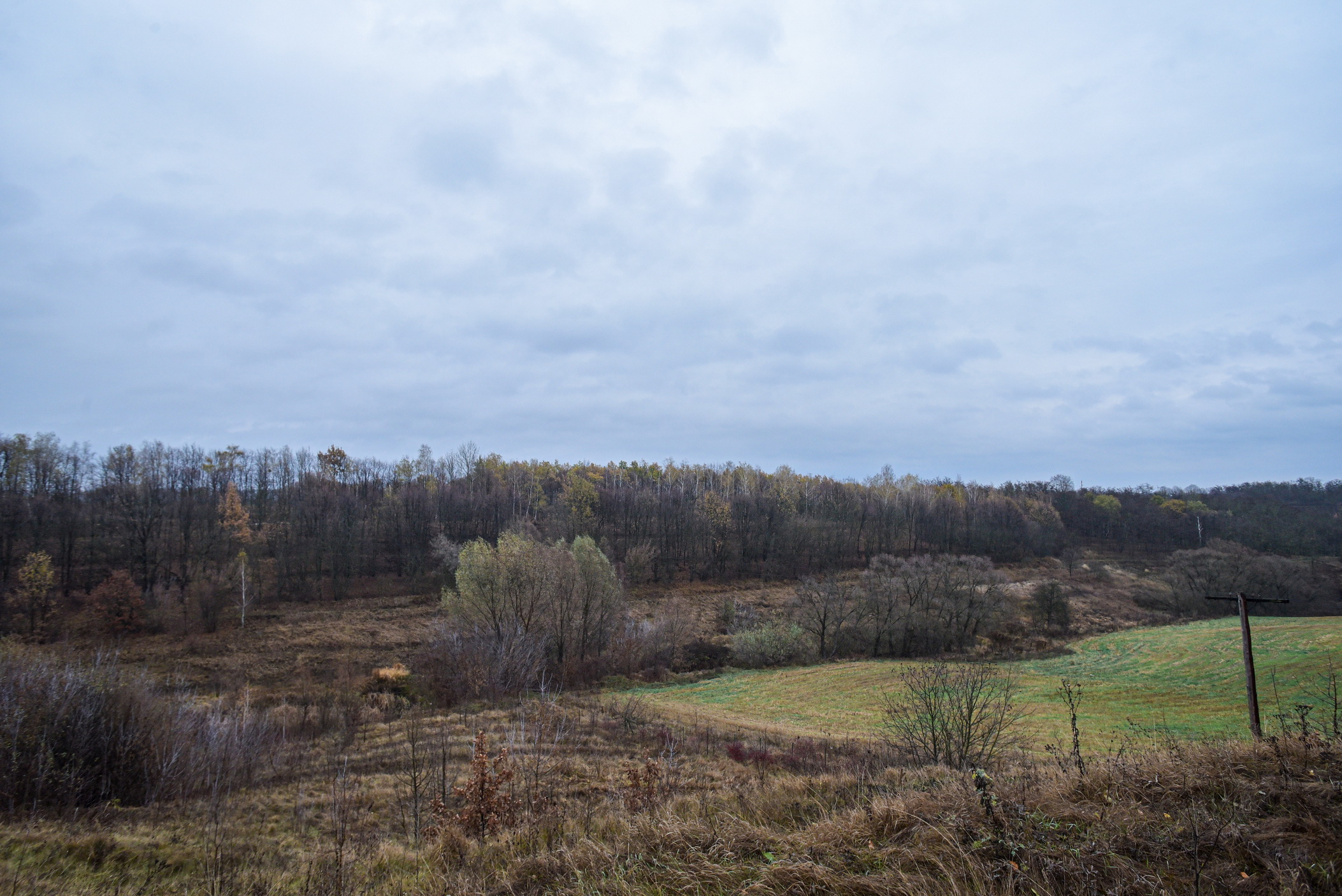 autumn landscape ukraine 0005