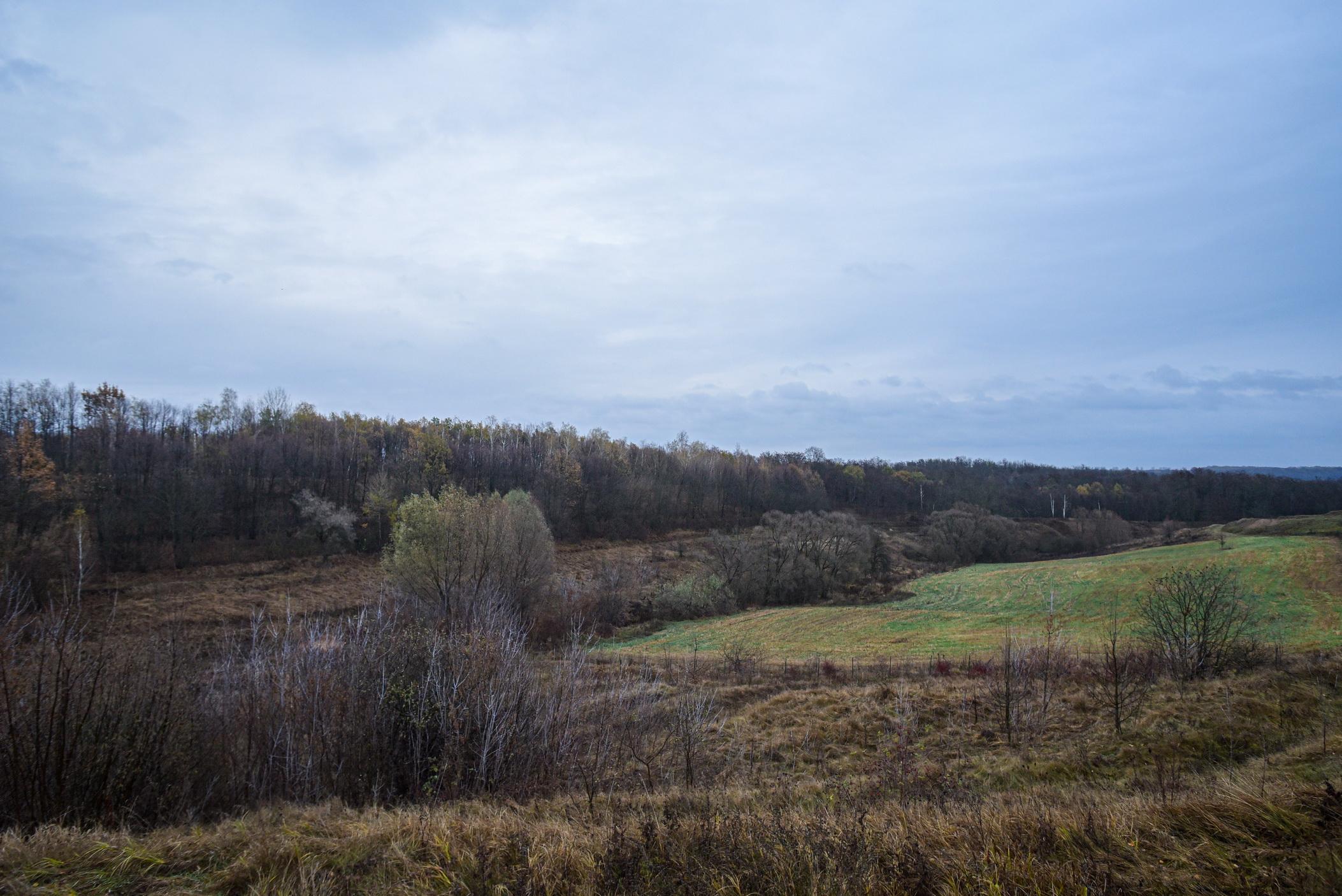 autumn landscape ukraine 0008