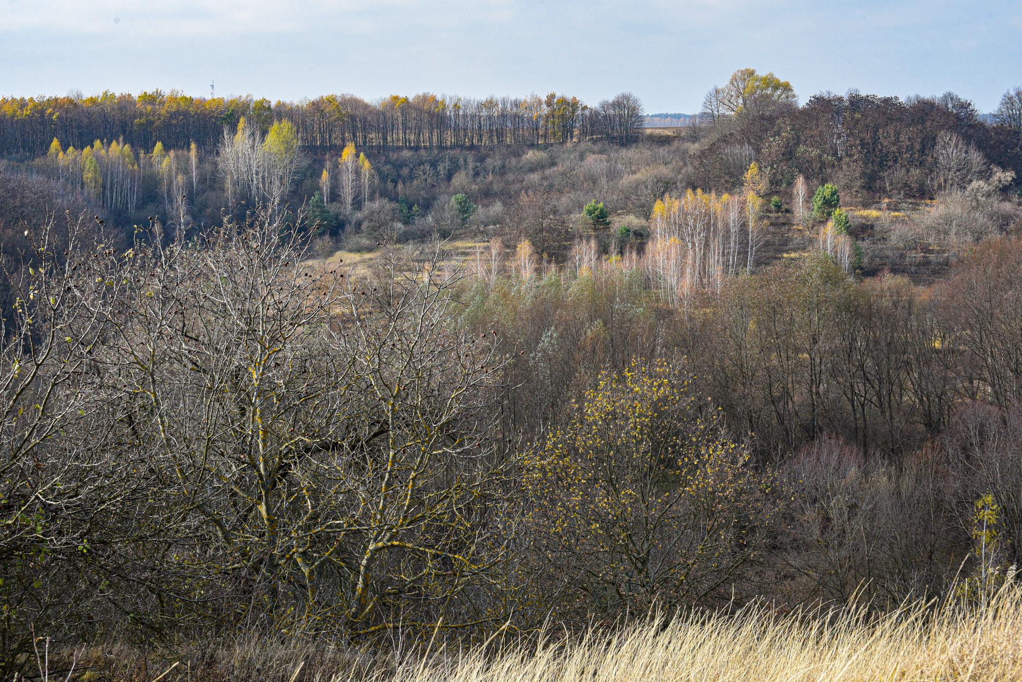 autumn landscape ukraine 0013