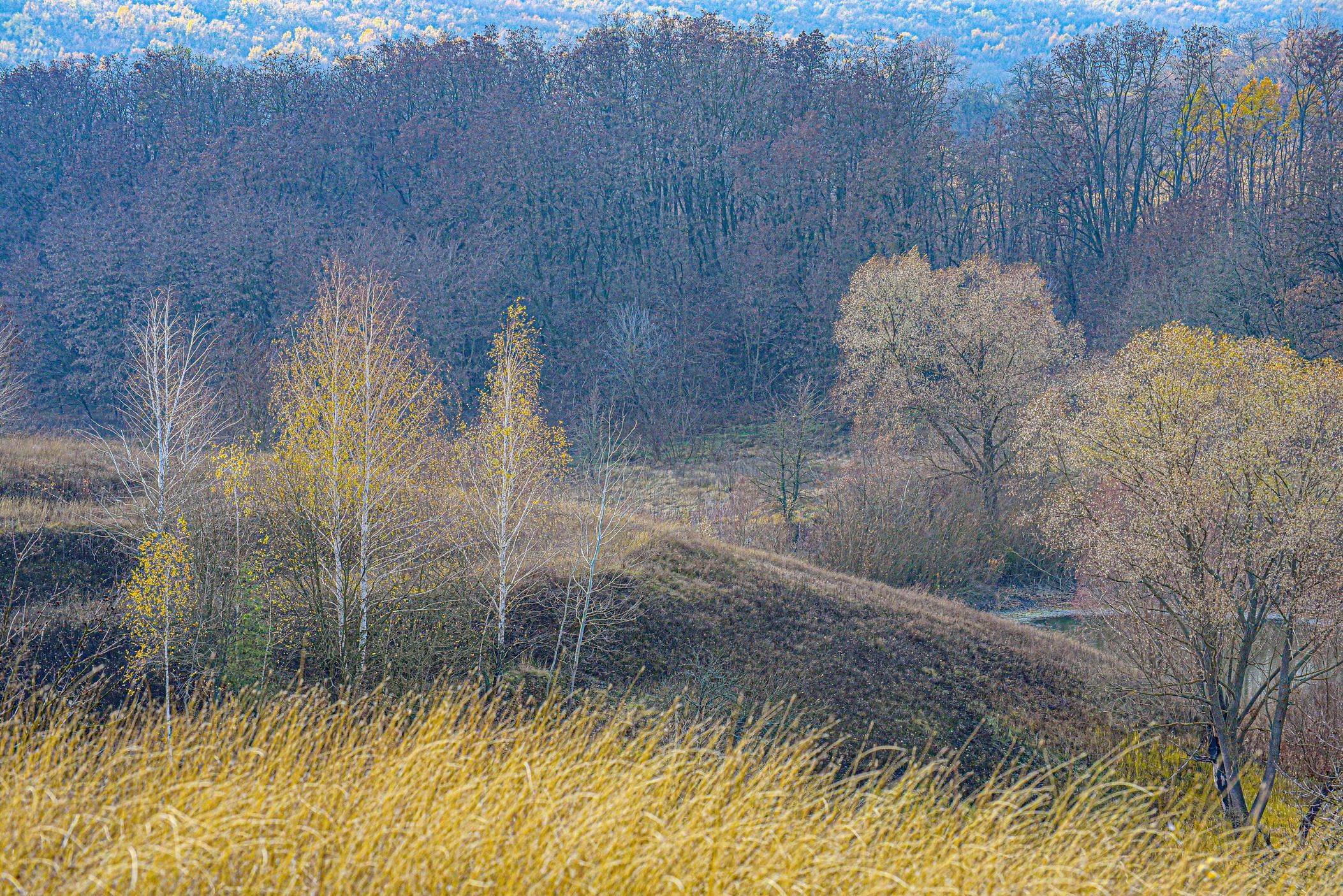 autumn landscape ukraine 0022
