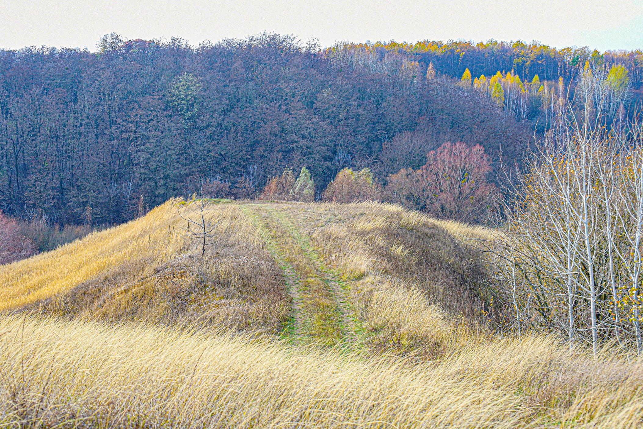 autumn landscape ukraine 0024