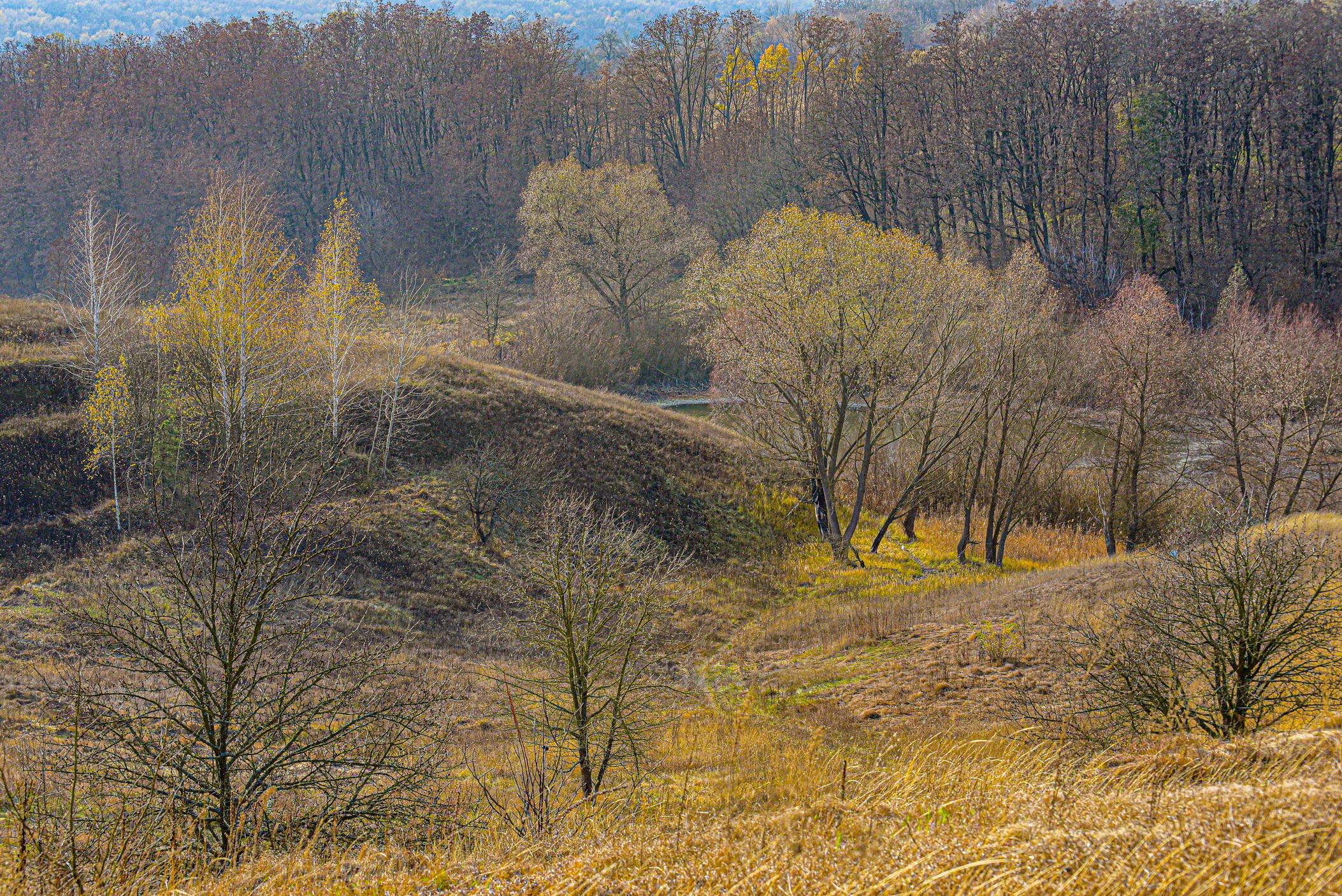 autumn landscape ukraine 0027